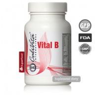 Vital B - witaminy dla grupy B
