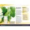 Protect 4Life opis z katalogu Calivita