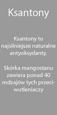Mangostan - antyoksydanty